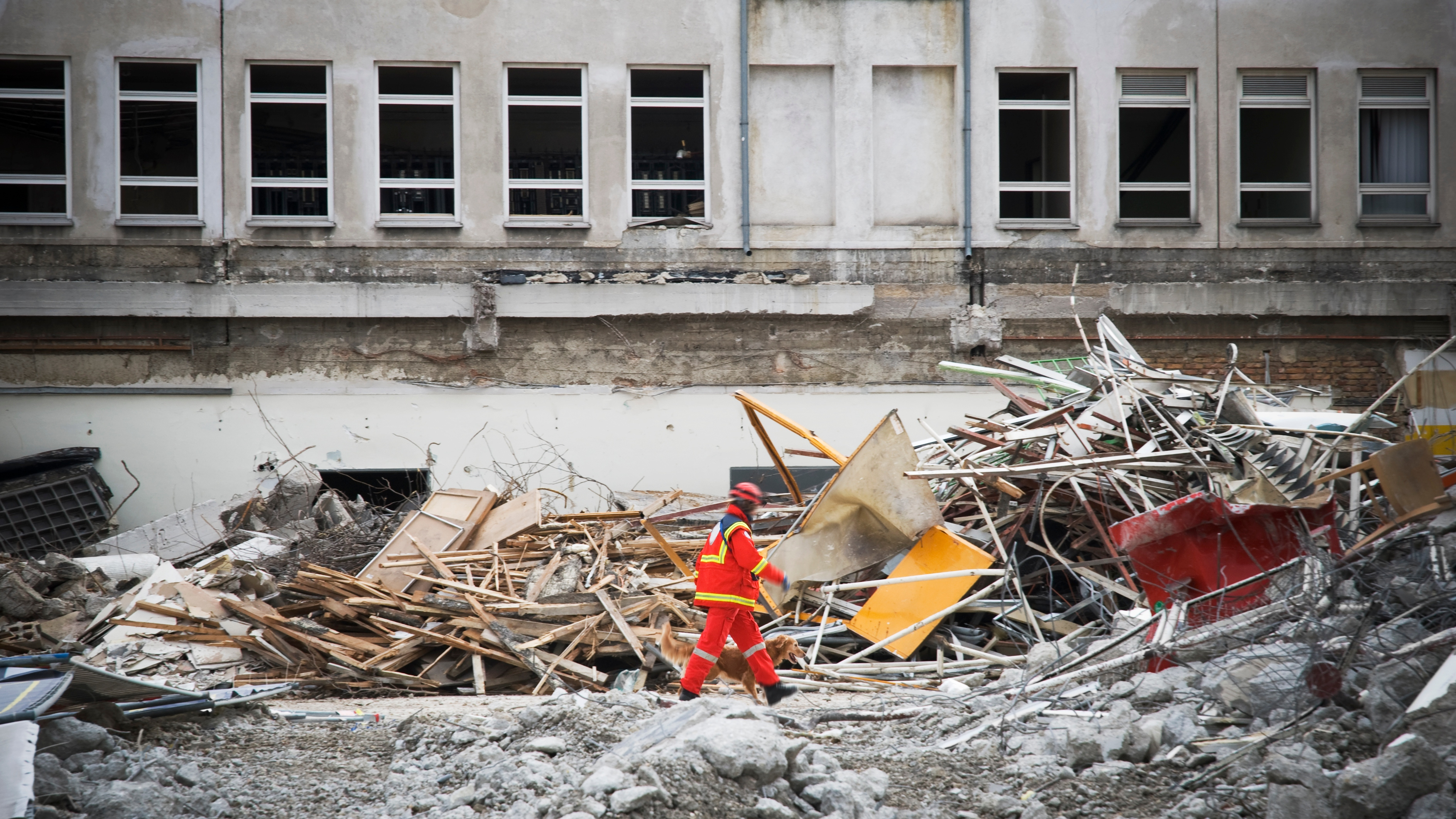 rescue man with dog searching for humans in a destroyed building