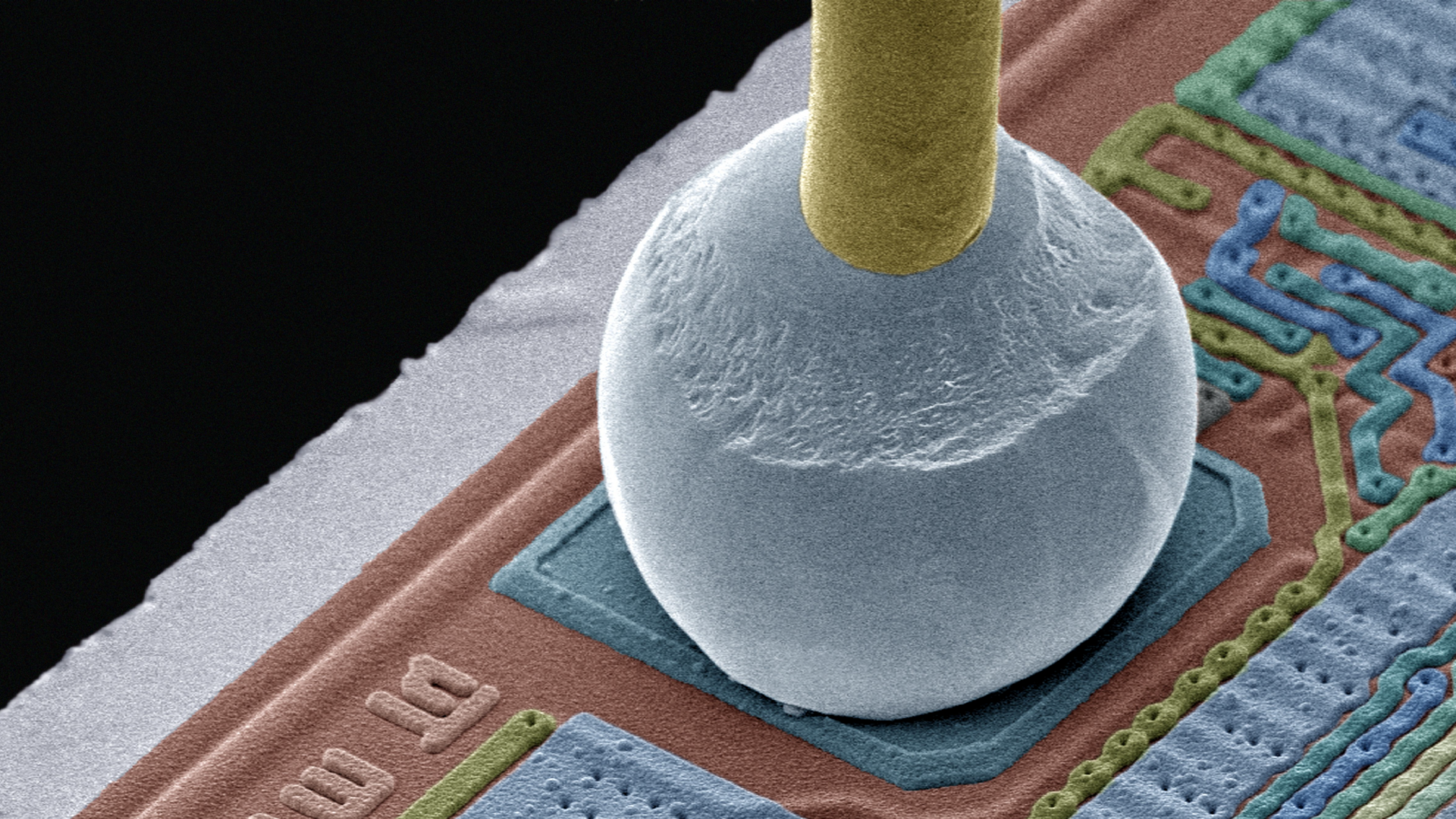 Chip connector coloured scanning electron micrograph