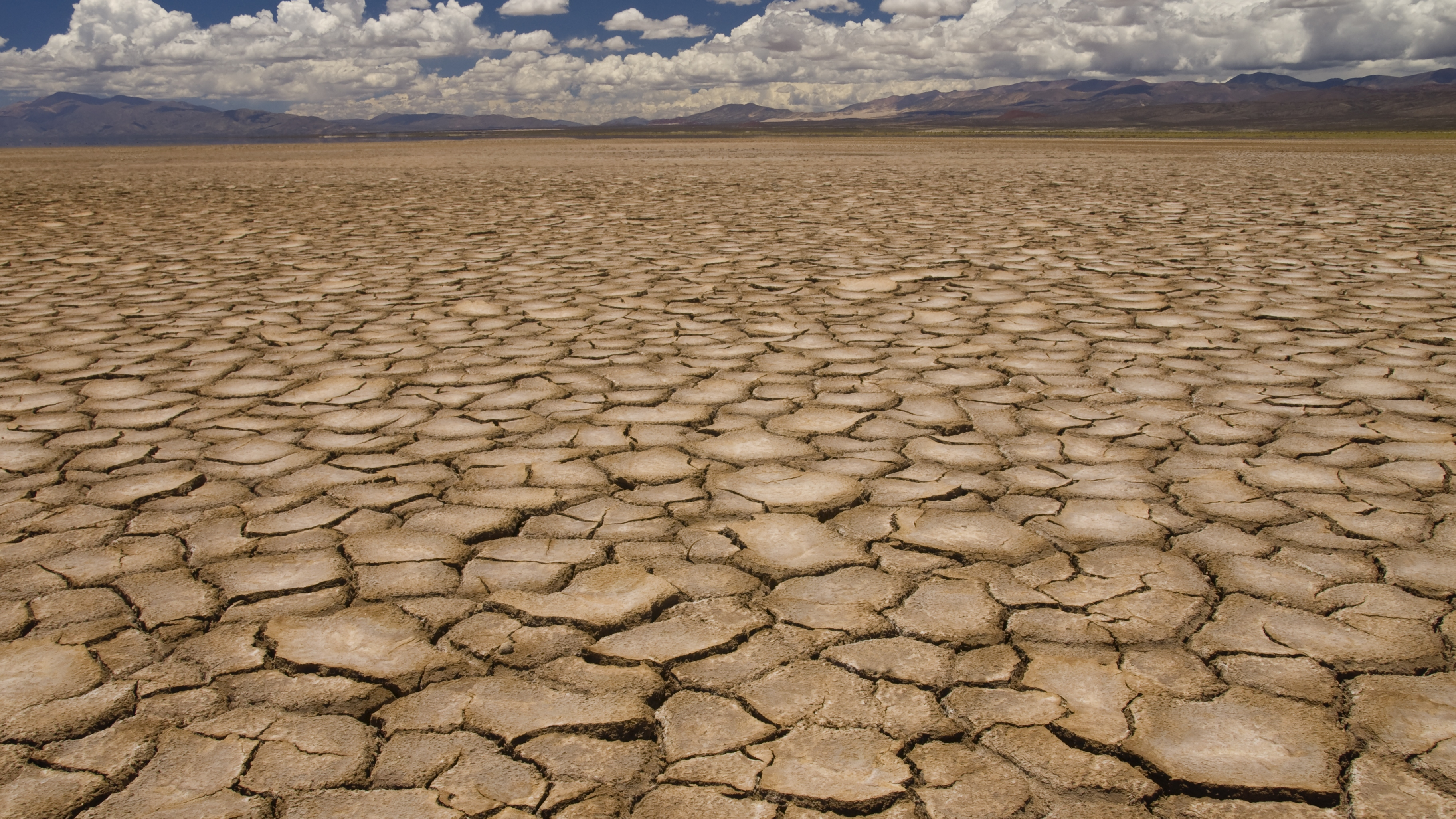 Droughts and heatwaves