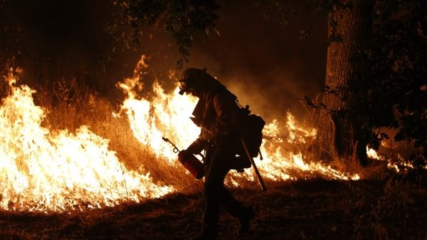 Rain fuels wildfire risk